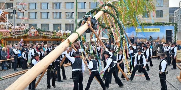 Der-Maibaum-steht-auf-dem-Dresdner-Altmarkt_big_teaser_article
